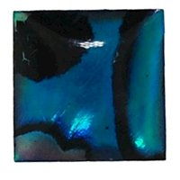 Picture of  Abalone Square Cabachon 6mm