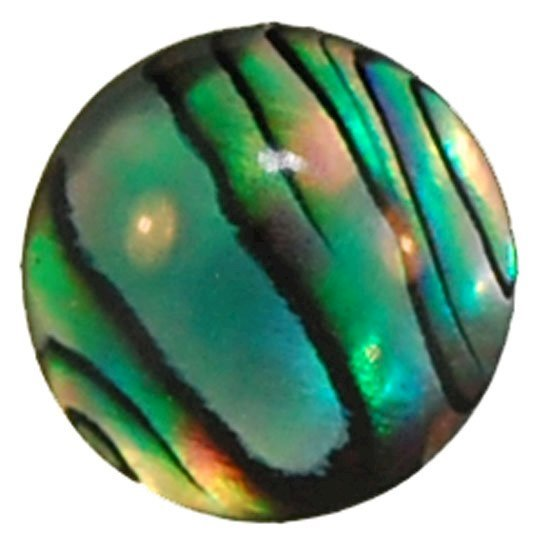 Picture of Abalone Round Cabachon 6mm